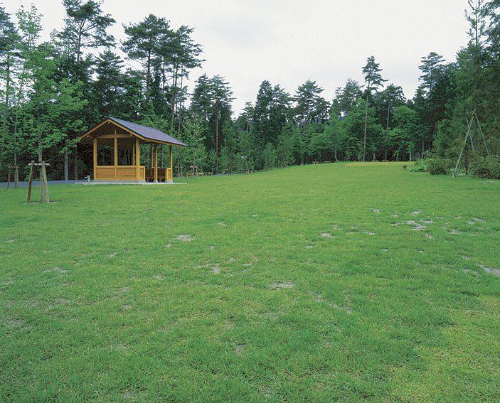 京北森林公園